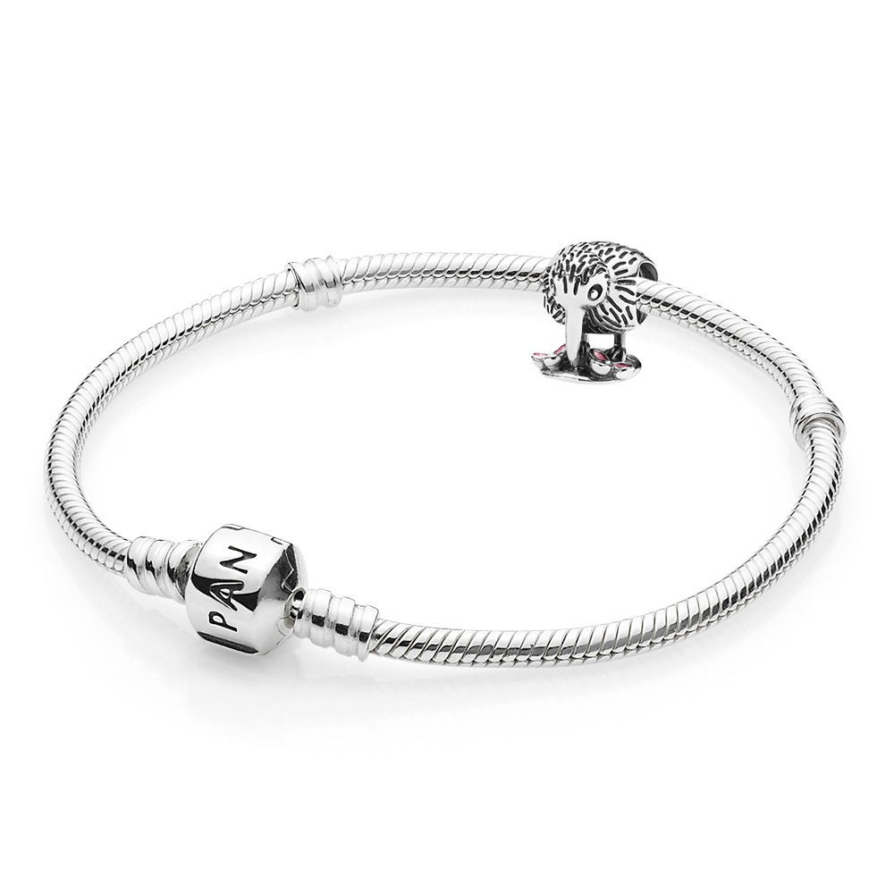 Offerte Pandora Kiwi Bird Bracciali And Charm Gift Set